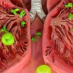 Долгий мучительный кашель