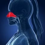 Признаки хронического ринофарингита