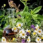Лечение зеленых соплей с помощью народной медицины